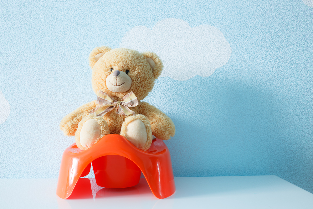 4 Things to Remember During Potty Training