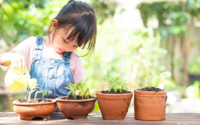 5 Garden Activities for Preschoolers